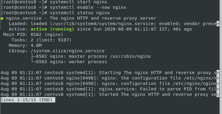 Start, Enable And Check Service In Nginx Http Web Server