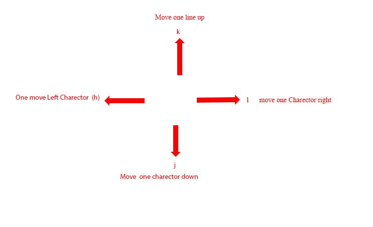Basic navigation  key in VIM Text Editor