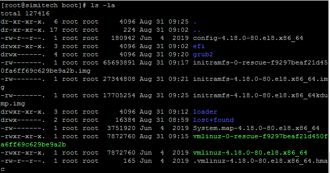 Display all file and Directory in linux Command